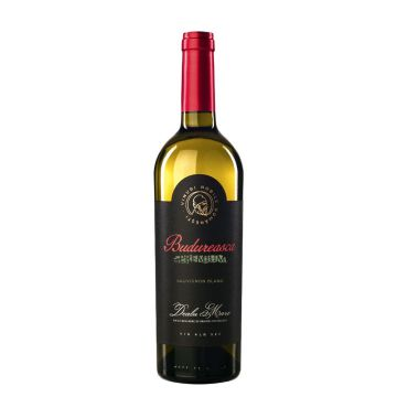 Premium Sauvignon Blanc Sec 2019