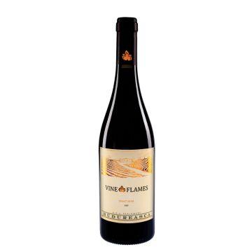 Vine in Flames Pinot Noir 2016 Sec