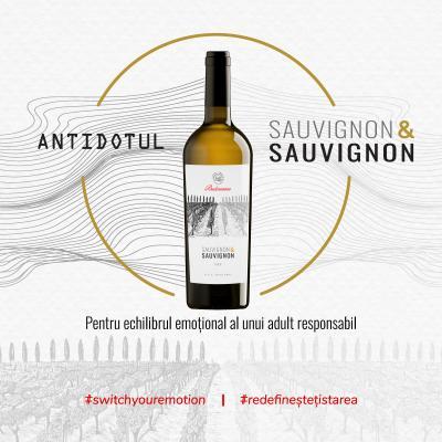 Noul Sauvignon & Sauvignon – Antidotul vârtejului emoțional!